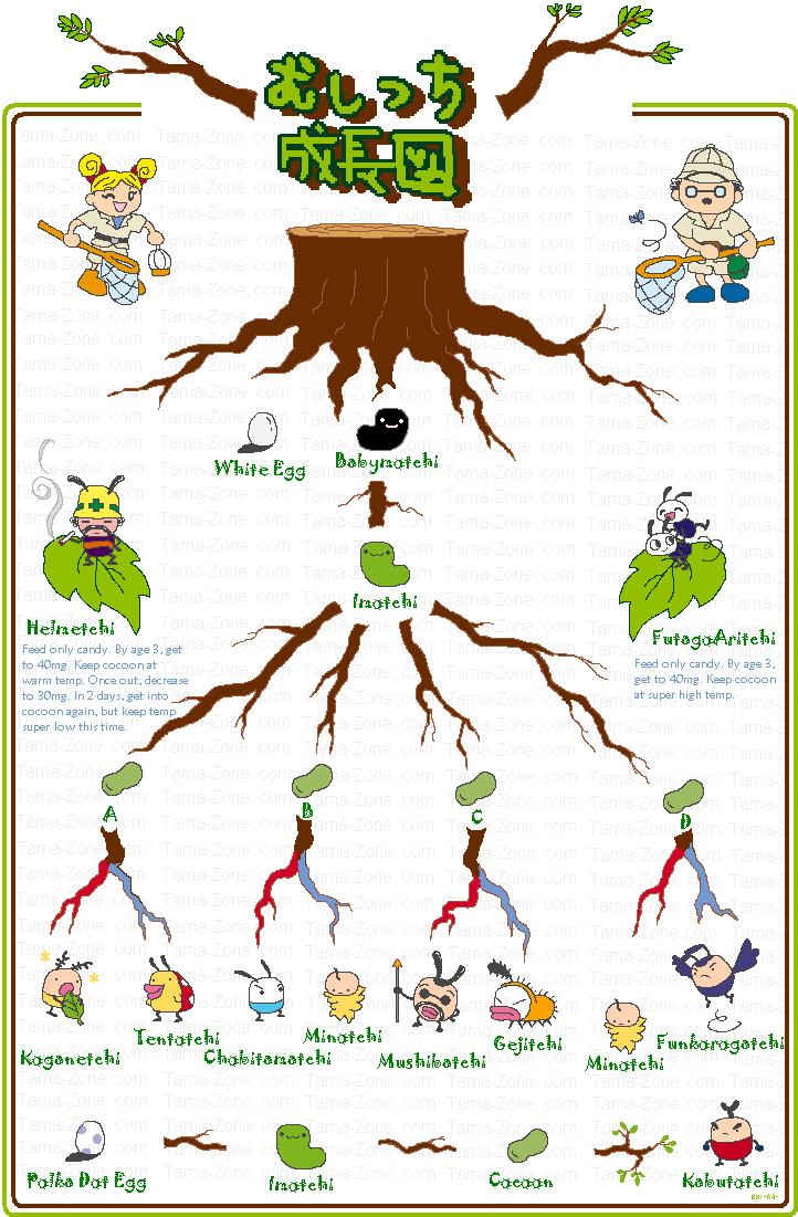 Tamagotchi Morino chart
